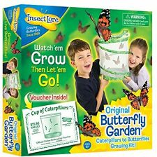 Insect Lore Butterfly Live Garden New Educational Science Toy Kids Kit Learning