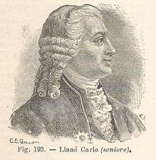 B1954 Carl von Linné - Incisione antica del 1928 - Engraving