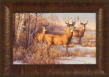 CAUTIOUS by Cynthie Fisher Deer Buck Doe Whitetail 11x15 FRAMED PRINT PICTURE