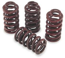 Andrews .550in. Lift Valve Springs Sportster XL Big Twin Harley- 294150