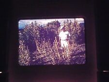 35 mm slide 1964 Marijuana farm Plant Harvest Africa Congo Huge Big field tall