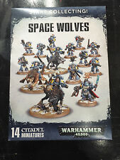 Warhammer 40,000 Start Collecting Space Wolves Space Marines