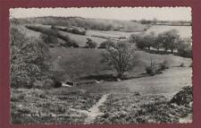 Petworth. The Gog Fields.  Sussex RP Photograph postcard ca.169