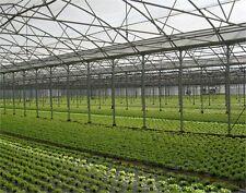 Greenhouse Film 9.0M x 180um Clear Per Lin/M