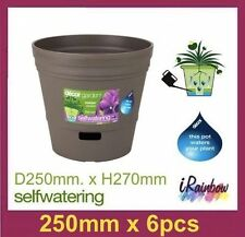 Plastic Garden Pots - 6pcs 250mm Self Watering - Indoor & Outdoor - Made in AU