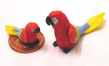 1:12 Scale Large & Small Red Parrots Dolls House Miniature Garden Bird P15