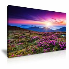 Beautiful Mountain Flowers Landscape Sun Canvas Wall Art Picture Print 76x50cm