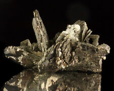 "2.7"" Shiny Gold PYRITE Crystals Pseudo after Marcasite Nanasivik Canada for sale"