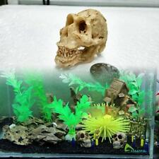 Halloween Aquarium Decorative Resin Skull Dragon Fish Tank Decoration NEW2
