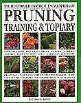 Illustrated Practical Encyclopedia of Pruning, Training and Topiary: How to Prun