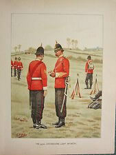 1905 ANTIQUE MILITARY PRINT ~ 43rd OXFORDSHIRE INFANTRY BRITISH IMPERIAL FORCES