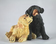 LABRADORS - PAIR of GORGEOUS LABRADOR PUPPIES, Fabulous Gift for any Dog Lover