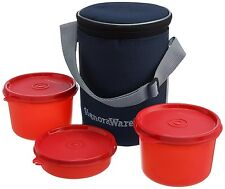 SIGNORAWARE EXECUTIVE LUNCH BOX WITH BAG (MEDIUM) (516) RED COLOR