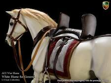 ACI White Horse for Roman General  1:6 scale Horse ACI-H04