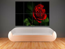 RED ROSES FLOWERS PRINT ART WALL PICTURE POSTER  GIANT HUGE