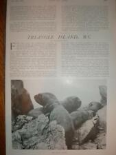 Article Triangle Island Canada BC 1909