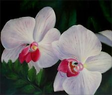 Quality Hand Painted Oil Painting Giant White/Lavender Orchids 20x24in