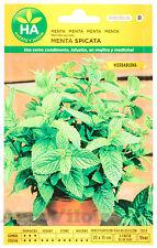 Hierbabuena - Menta Spicata - 1200 Semillas (0,10 g) - Sobre Hermético HA