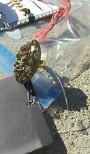 NWT Urban Outfitters Gold Raw Stone Ring