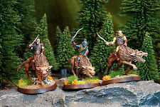 3 Pro Painted Hunter Orcs on Fell Wargs A . The Hobbit - Lord of the Rings