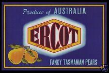 Pear Label: Tasmania - Original - Ercot - Fancy