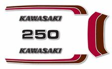 1973 Kawasaki F11 - European Model - Decal set