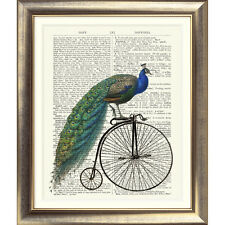 ART PRINT ON ANTIQUE BOOK PAGE Peacock Shabby Chic Bird Vintage Bicycle Picture