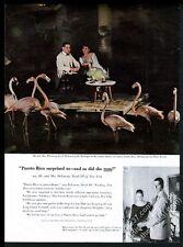 1959 pink flamingo flock photo at Caribe Hilton Puerto Rico travel print ad