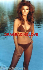 "Gorgeous Actress/Sex Symbol ""Raquel Welch"" 8x10 ""Pin Up"" PHOTO! #(25b)"