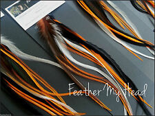 12 Harley Hog Wild Mix Natural Feather Hair Extension Feathers Do It Yourself L1