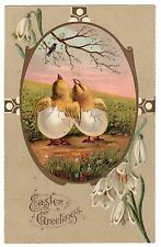 ANTIQUE 1908 EASTER GREETINGS EMBOSSED 2 BABY CHICKS POPPING OUT OF EGG POSTCARD