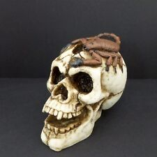 Vampire Skull With Scorpion Statue Halloween Decor Spooky Resin Figurine