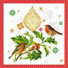 20 Servietten Serviettentechnik Wintersong Birds, Vögel Winter CL 33x33