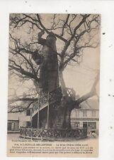 Allouville Bellefosse Le Gros Chene France Vintage Postcard 906a