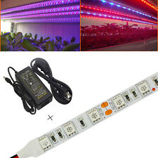 5x 0.5M 25W 5050 SMD LED Plant Grow Light Bar Strip Hydroponic Red Blue+DC Power