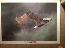 """RARE Canyon Highlights Bald Eagle-""""Artist Proof"""" #43/95  by Ted Blaylock"""