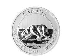 Kanada 1,5 oz 999 Silber Silbermünze Polarbär 2013 Bär Royal Canadian Mint 8 CAD