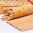 New 12 Colors Professional Fine Drawing Pencils Set Artist Kid Writing Sketching