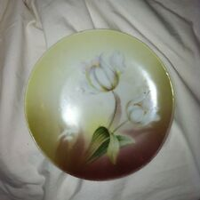 Lovely Tulip  Hand Decorated R S Germany Green White Plate