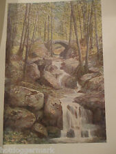 ANTIQUE PRINT DATED 1908 COLOUR BELGIUM BY FORESTIER PONT DU PROPHETE SPA WOODS