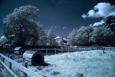 Infrared Photography with Digital and 1.4 Nikon, Zeiss, Contarex and XF lenses