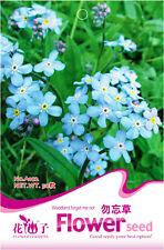 1 Pack 50 Blue Forget-me-not Seeds Myosotis Sylvatica Limonium Sinuatum A102