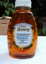 2 Lbs Raw Unfiltered Unpasteurized Artisan Orange Blossom Honey