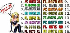 2 color Boat Registration Numbers or PWC Decals Stickers Graphics Hull Id x2