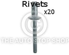 Rivets Multi-Grip 6,4 X 17MM Citroen DS3/DS4/DS5/Nemo etc 20PK 11529ci