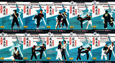 Chinese Kungfu Bruce Lee Jeet Kune Do Course Complete Series by Wei Feng 10DVDs