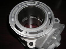 Polaris 600cc RMK Replated Cylinder Casting # 3021542; $125 CORE REFUND !