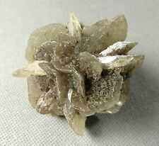 Gypsum 'Rose' natural mineral specimen. 12.8 gms (0.45 oz). Fluorescent.