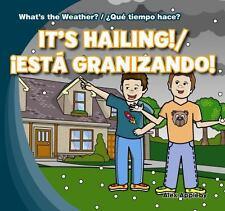 It's Hailing!Est Granizando! (What's the Weather?Que Tiempo Hace?)