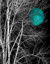 Black White Teal Moon Tree Modern Bedroom Wall Art Mated Picture